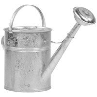 Euroactive  Galvanised Watering Can - 9 Litre